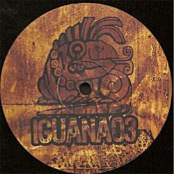 Iguana 03
