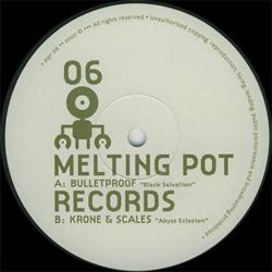 Melting Pot 06