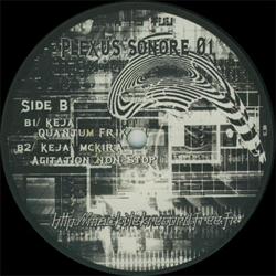 Plexus Sonore 01