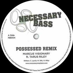 Necessary Bass 04