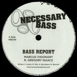 Necessary Bass 06