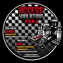 Access Violation 06