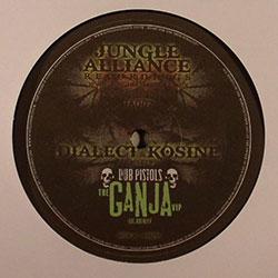 Jungle Alliance 02