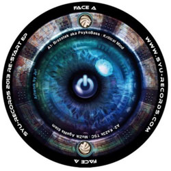 SYU Records 2013