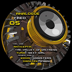 Analogue Frequency 05