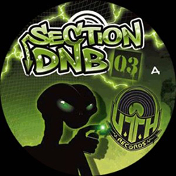 UTH Section DnB 03