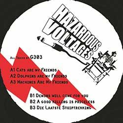 Hazardous Voltages 05