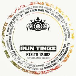 Run Tingz LTD 12002