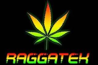 Raggatek / Jungletek